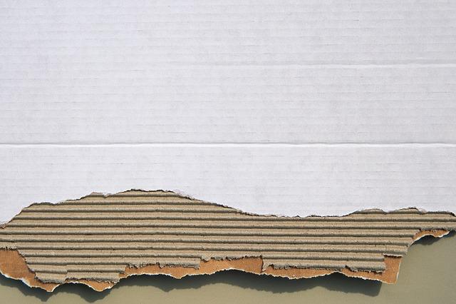 carton corrugado